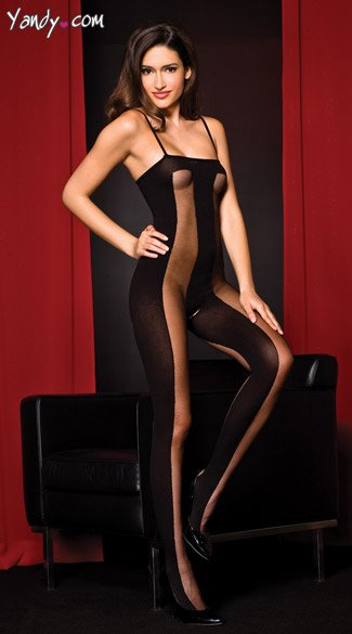 Mesh and Opaque Bodystocking, Striped Body Stocking