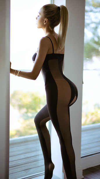 Mesh and Opaque Bodystocking - Black