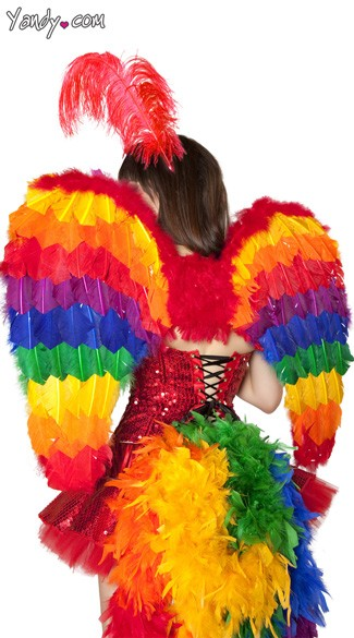 Rainbow Feather Wings - As Shown