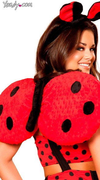 Lady Bug Wings, Polka Dot Wings, Ladybug Wings