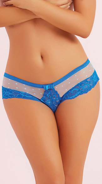 Galloon Lace and Dotted Mesh Panty, Sheer Mesh Panty, Mesh and Lace Panty