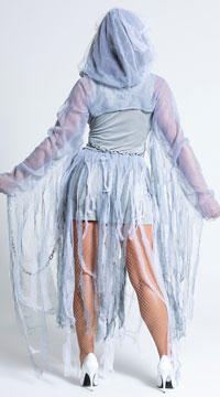 Haunting Beauty Costume - Gray