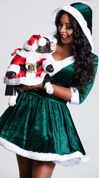 Santa Paws Dog Costume - as shown
