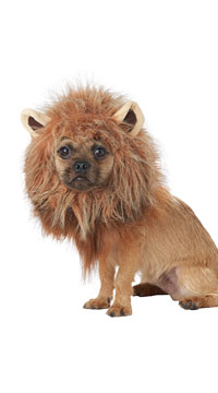 Jungle Bark Dog Costume - as shown