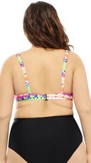 Plus Size Rainbow Blast Bikini Top