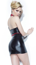 Wet Look Dress and Tuxedo Harness - as shown