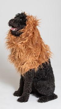 Large Dog Lion Mane Costume
