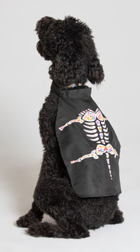 Day of the Dead Dog Cape Costume
